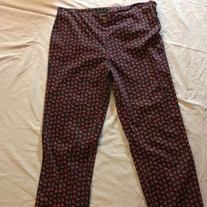 Talbots Skinny Ankle Pant Sz 10 LADYBUGS Side Zip