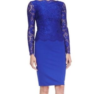 Ted Baker Vendela Fitted Lace Blue Top Dress Mint