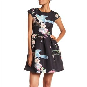 Zaldana Ted Baker Dress Black Size 1 (Size 4 US)