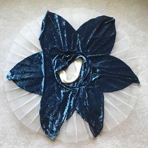 Weissman ballet pointe costume platter tutu