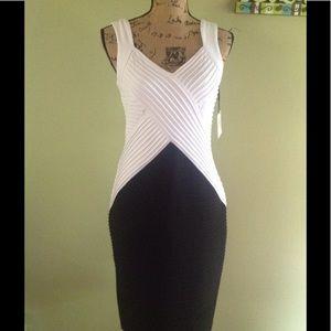 Calvin Klein dress 10 NWT