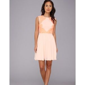 NWT Ted Baker Vember Lace Color Block Dress Sz 4