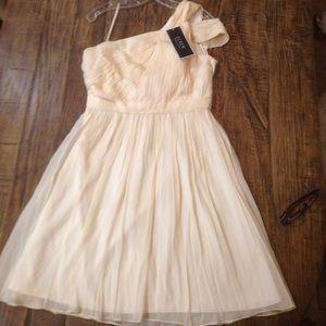 J.crew champagne C8932 bridesmaid/mother dress