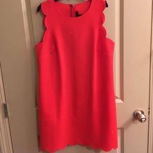 J. Crew scalloped Dress.
