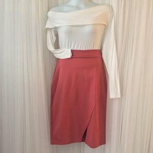 Dresses & Skirts - ✨SALE SALE SALE✨ Rust Peach Pencil Style Skirt