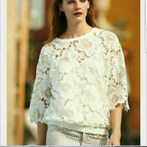 Anthropologie Lace Dolan blouse
