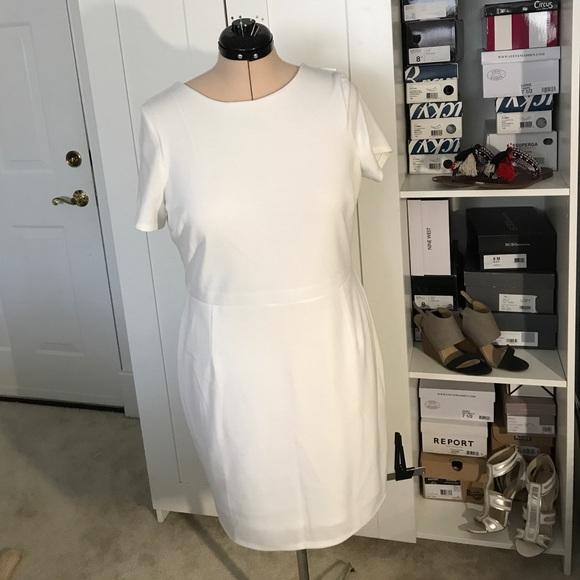 Asos Dresses - ASOS Ruffle Back Mini Dress