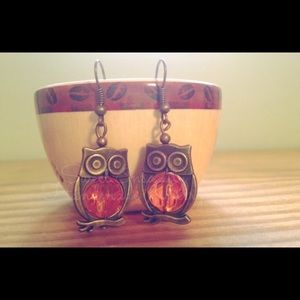Owl earrings NWOT