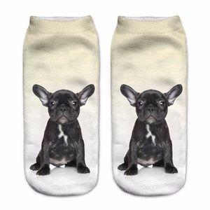 French Bulldog Puppy Socks