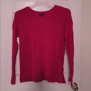 AE v neck sweater