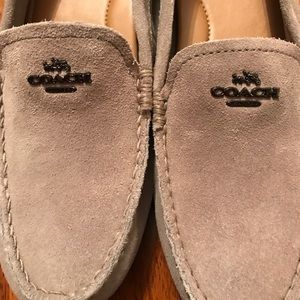 Suede Coach Loafers. Perfect for fall! NWOT!