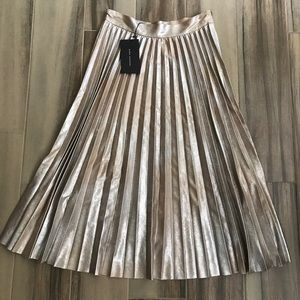 Accordion Pleated Zara Skirt