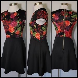 Ted Baker Juxtapose Rose Skater Dress