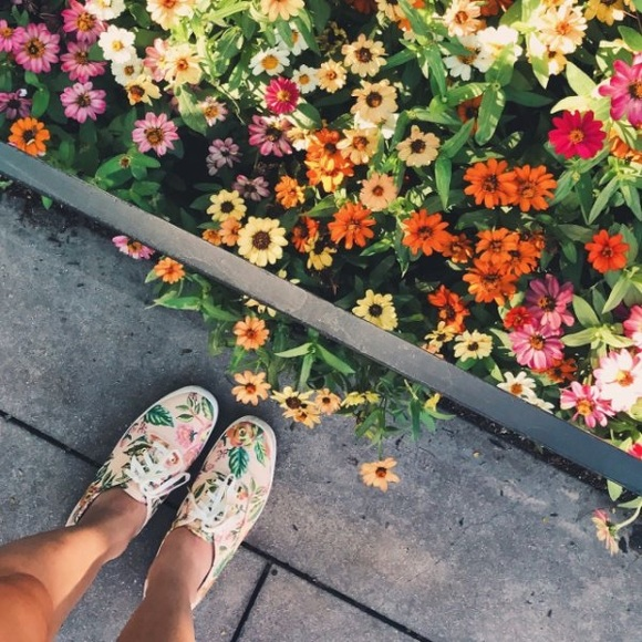 e35ebaa41cb KEDS X RIFLE PAPER CO. CHAMPION JARDIN DE PARIS