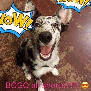 Pants - BOGO ALL SHORTS 🌞🎉