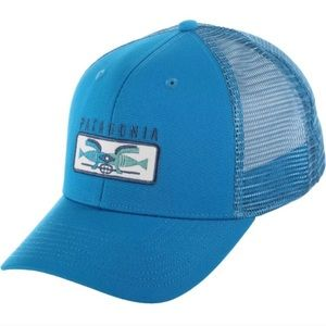NWT PATAGONIA BT BLUE SHARED VISION TRUCKER HAT OS