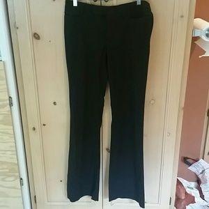 modern bootcut pants 10 Long