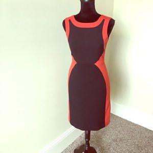 NWT Limited Midi dress in size 0.