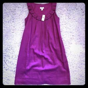 NWT Ann Taylor Loft Purple size 8