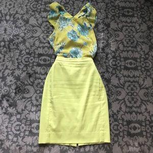 Zara Top and Jcrew skirt