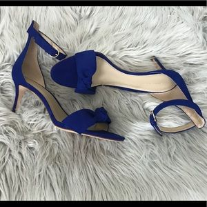 Ann Taylor - Cobalt Blue