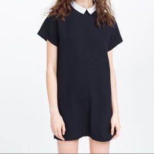 Zara navy shift dress with white collar