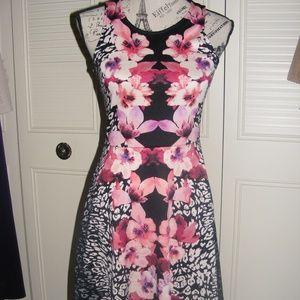 H&M Black Pink Floral Animal Print Fit Flare Dress
