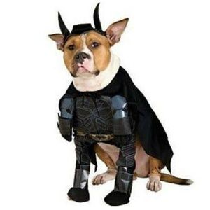 Batman Costume Bat Man Pet Outfit Jumpsuit & Hat