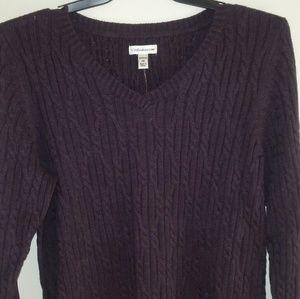 NWT Deep Purple V Neck Sweater