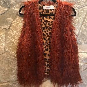 Gorgeous Faux Fur Vest BYDANIE