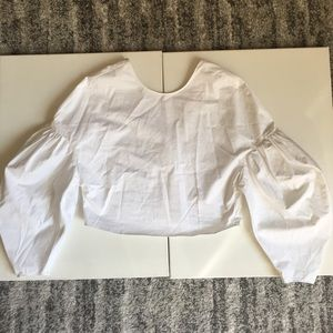 Zara Exaggerated Sleeve Blouse