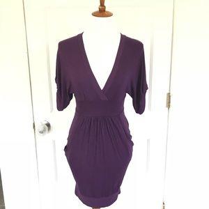 Zara purple deep v-neck banded waist pocket dress