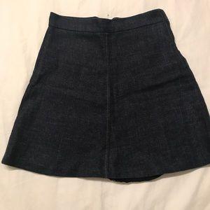Zara Denim Circle Skirt