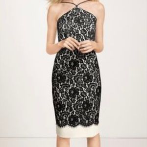 The Limited black and cream lace halter dress