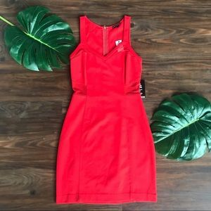 Express Red Mini Dress with Mesh detail