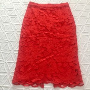 Sexy Lace Bebe Skirt