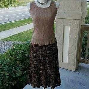 Beautiful Lined Fall looking skirt