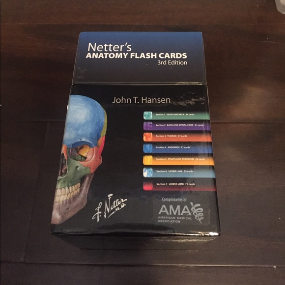 Netters Anatomy Flashcards