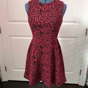 NWOT Rose fit & flare dress