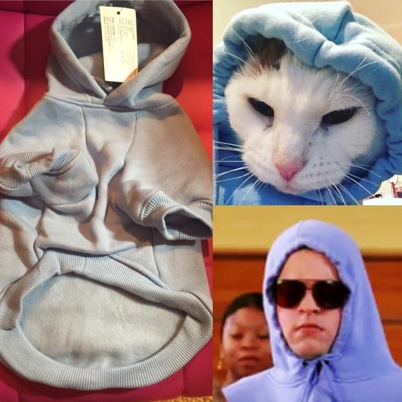 Other Mean Girls Damian Blue Hoodie Dog Pet Cat Costume Poshmark
