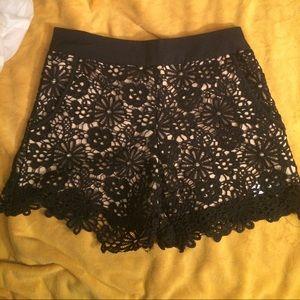 NWOT cream and black lace shorts