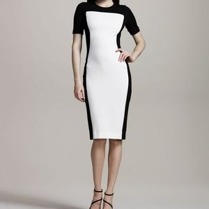 *Stella McCartney* Black and Ivory Dress*