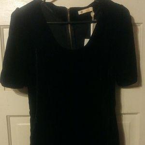 NWT Tulle black velvet mini dress. Size L