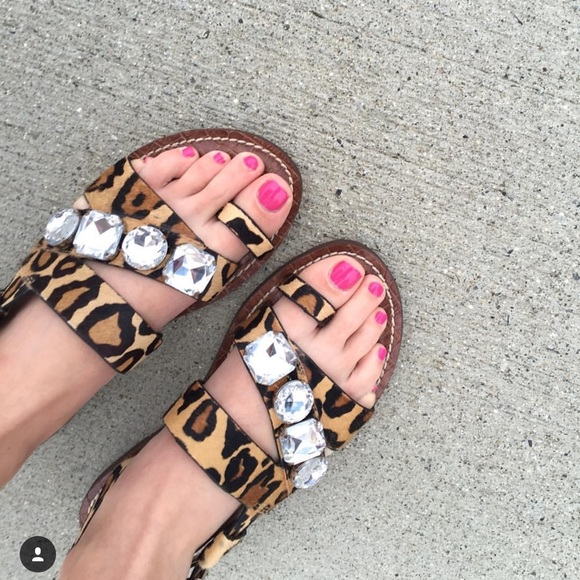 Sam Edelman Shoes - Sam Edelman Leopard Jeweled Sandals