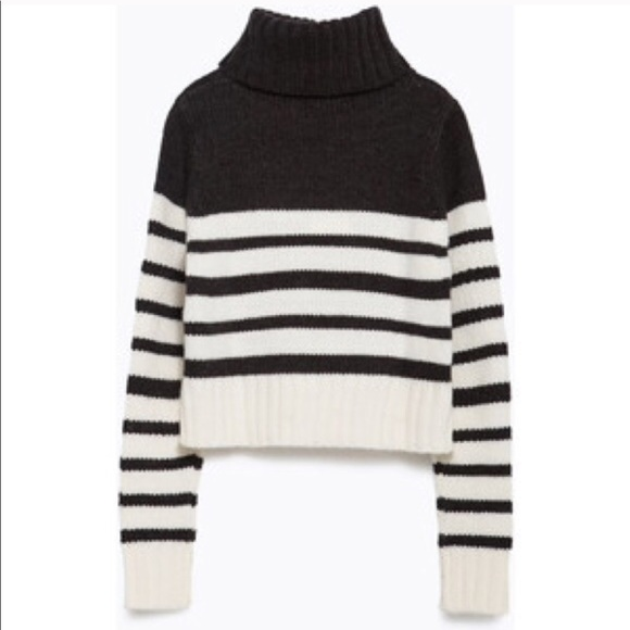 382d3f3a Zara Knit Stripe Crop Turtleneck Sweater. M_59d950a6620ff7bc57066bb7