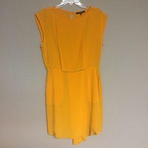 Tibi Mango Dress w/ Pockets