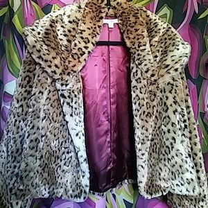 ModCloth - Faux Leopard bomber with collar Size L
