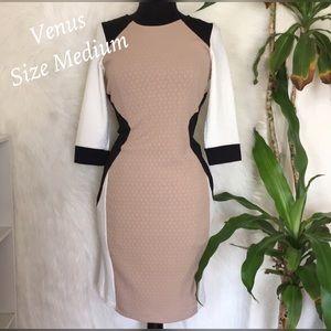 Venus Brand Bodycon Colorblock Dress