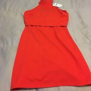 Asos Petite Dress, w/ Tags
