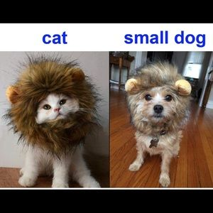 Other - Lion costume for cat/small dog